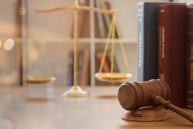 law definition biology